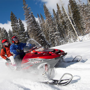 snowmobile insurance policy