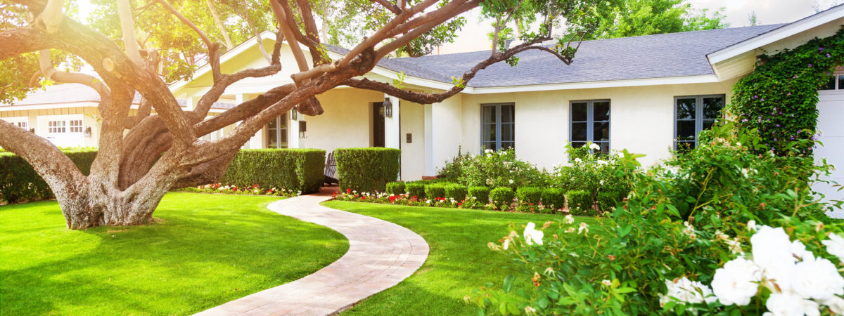 home with green grass yard